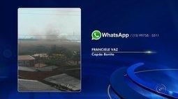 Incêndio atinge plantação de trigo em Capão Bonito