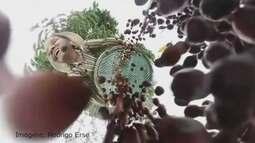 Exposição destaca produção de café em 360 graus