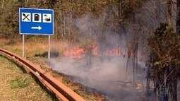Incêndio atinge vegetação às margens de rodovia perto de Ouro Preto