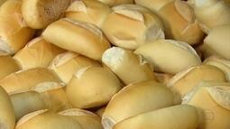 Endocrinologista explica quais os nutrientes encontrados no pão
