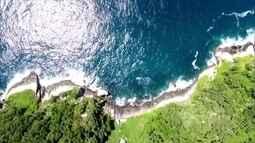 Globo Natureza: Ilha Grande