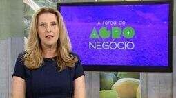 A Força do Agronegócio: reportagem mostra importância do meio rural