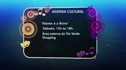 Descubra as dicas da agenda cultural do Bom Dia Amazônia