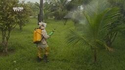 Parte 3: Cresce indicie de intoxicação por agrotóxicos agrícolas em Rondônia