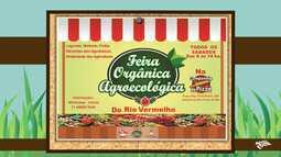 Confira os locais onde são vendidos produtos orgânicos na capital baiana