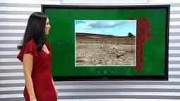 Previsão do tempo: agricultores de Feira de Santana sofrem prejuízos por causa da seca