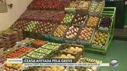 Paralisação dos caminhoneiros impacta na chegada de alimentos na Ceasa de Campinas