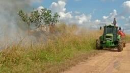 Incêndios próximos a lavouras de milho preocupam produtores