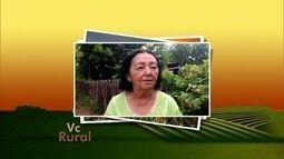 Veja os vídeos do 'Vc Rural' deste domingo (17)