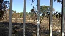 Moradores do Recanto dos Pássaros sofrem com o grande número de queimadas no bairro