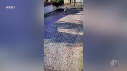 Mulher é assaltada na Zona Sul de Natal