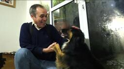 Ter um animal de estimação é saber que a vida vai mudar pra melhor