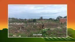 INEA faz operação conta ocupação irregular em área de preservação ambiental