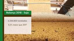 IBGE aponta primeiro diagnóstico sobre a safra 2019 na Bahia