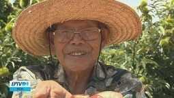 Produtor de castanhas é destaque e ganha prêmio pelo trabalho na região
