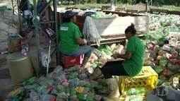 Cooperativa de Reciclagem de Santarém surgiu há seis anos e reúne 96 catadores