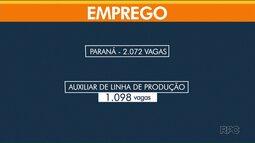 No Paraná, só o CIEE está com 2.240 vagas para estágio abertas