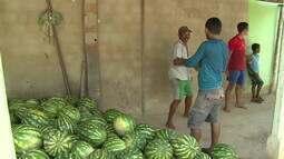 Indiaroba tem cooperativa de produtores orgânicos