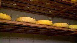 Família de São João del Rei se destaca na produção do queijo minas artesanal