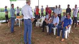 Dia da campo apresenta tecnologias para a produtividade de soja e milho em Balsas