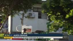 Dengue preocupa moradores de Uraí, no Norte do Estado