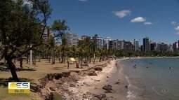 Três coqueiros são trocados de lugar em praia de Vitória