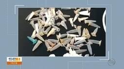 Operação de combate ao tráfico e homicídios cumpre 68 mandados