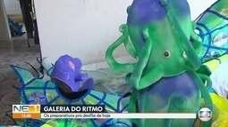Galeria do Ritmo faz os preparativos finais para o desfile de escolas de samba no Recife