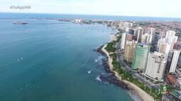 Homenagem ao aniversário de Fortaleza nos versos do poeta Mailson Furtado