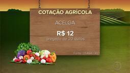 Confira a cotação agrícola