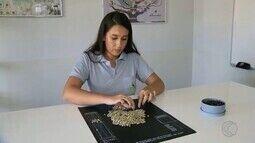 Setor do agronegócio em Uberlândia conta com novas tecnologias e profissões