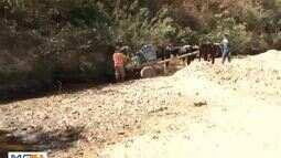 Dia Mundial de combate à desertificação é lembrado nesta segunda-feira (17)