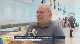 Combate à Mosca da Carambola é intensificado com fiscalização em aeroporto de Macapá