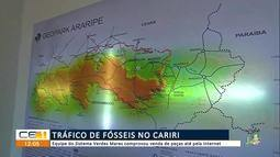 Tráfico de fósseis no Cariri