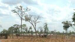 No Tocantins, 80 mil famílias rurais podem requerer título definitivo de propriedades