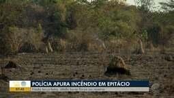 Polícia investiga causas de incêndio em reserva florestal em Presidente Epitácio