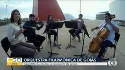Quarteto de cordas da Orquestra Filarmônica de Goiás se apresenta na capital