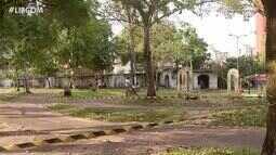 Praças enfrentam falta de manutenção e limpeza