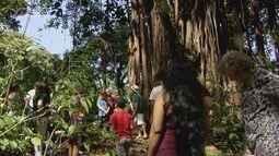 Universidade promove cursos de autoconhecimento na Baixada Santista