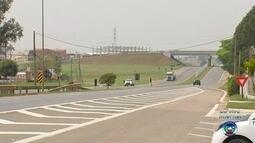 Aumentam os casos de atropelamento nas estradas da região de Itapetininga