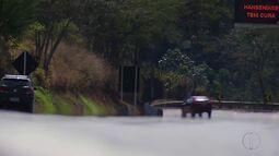 Cervo da Índia é encontrado morto em Bom Jardim, no RJ