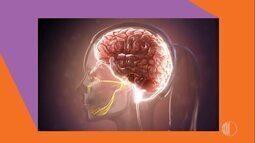 Quais os tipos de dor de cabeça