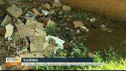 Em 5 dias são recolhidas mais de 1,5 tonelada de lixo dos córregos de Cachoeiro, ES