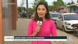 Vacina contra febre aftosa tem início em Rondônia