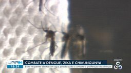 Casos de dengue, zika e chikungunya crescem em Roraima