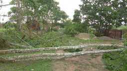 Temporal deixou muitos estragos em Rio Branco