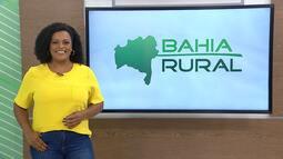 Bahia Rural - 28/02/2021 - Bloco 2
