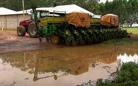 Chuva provoca atraso na colheita de soja em propriedades de MT