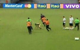 Torcedores invadem treino da Seleção em Manaus