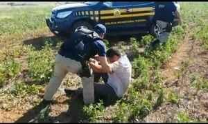 Polícia de Goiás resgata homem feito refém e deixado amarrado em matagal